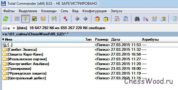 """Для большей надежности,  базы данных можно хранить на локальном диске """"D"""", создав под каждый дебют отдельную папку"""