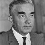 Шахматист, гроссмейстер, Александр Александрович Котов